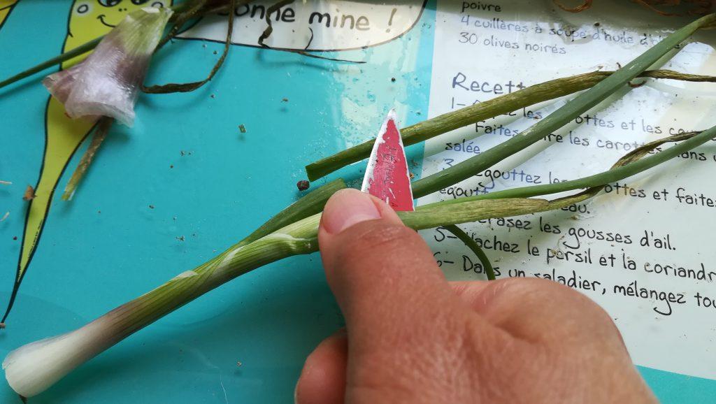 Préparations oignons verts