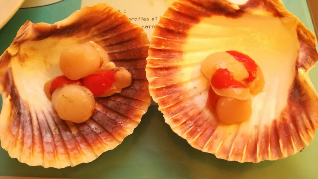 Coquilles de saint-jacques