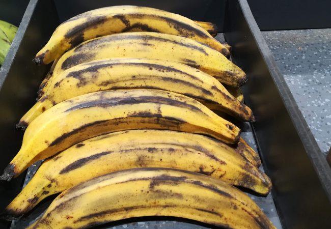 Bananes plantain mûres