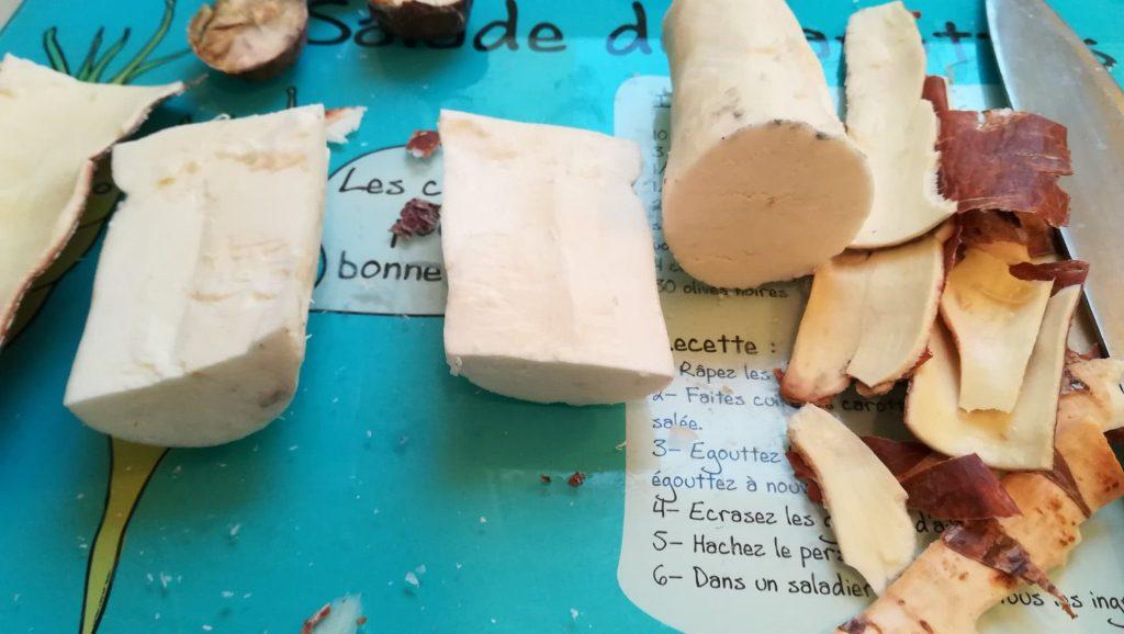 Manioc cassava