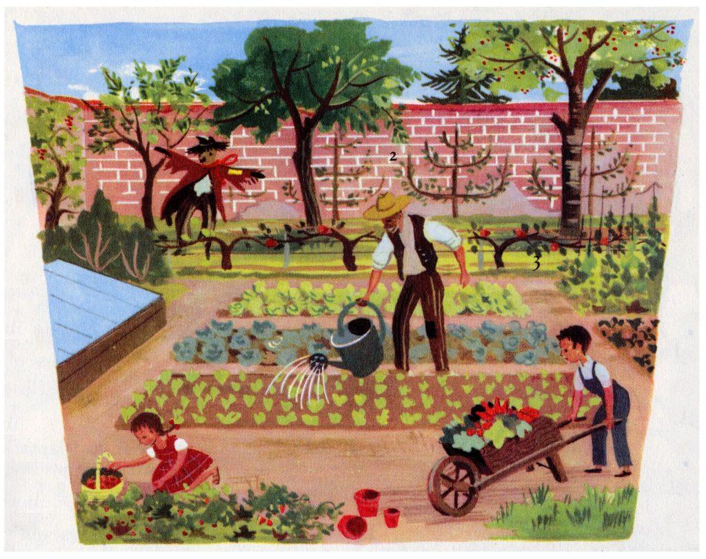 Le potager fait partie de l'agriculture sociale